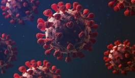 Avrupa koronavirüse karşı ulusal karantinaya...